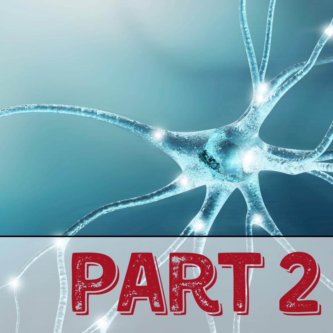 Master Clinical Neurology Part 2:  Seizures